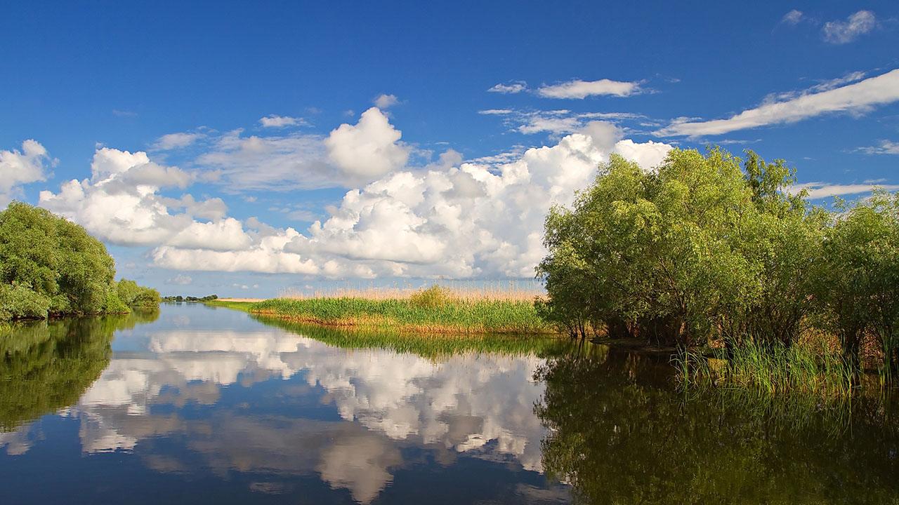 Locul unde se plamadeste un uscat – Delta Dunarii
